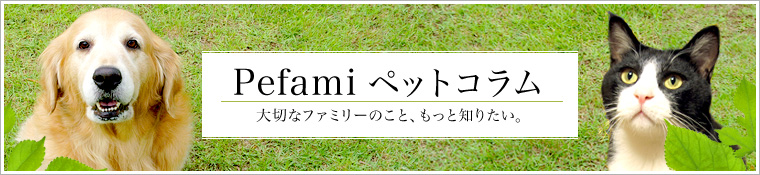 Pefami ペットコラム